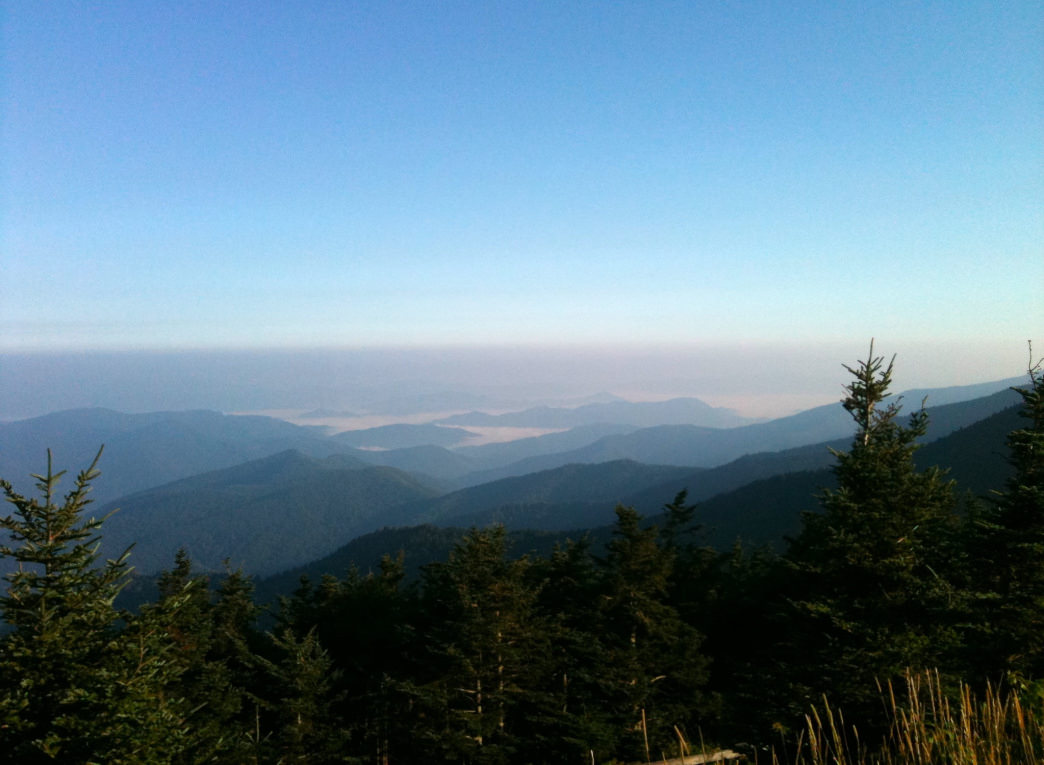 Mount Mitchell is the tallest mountain east of the Mississippi.