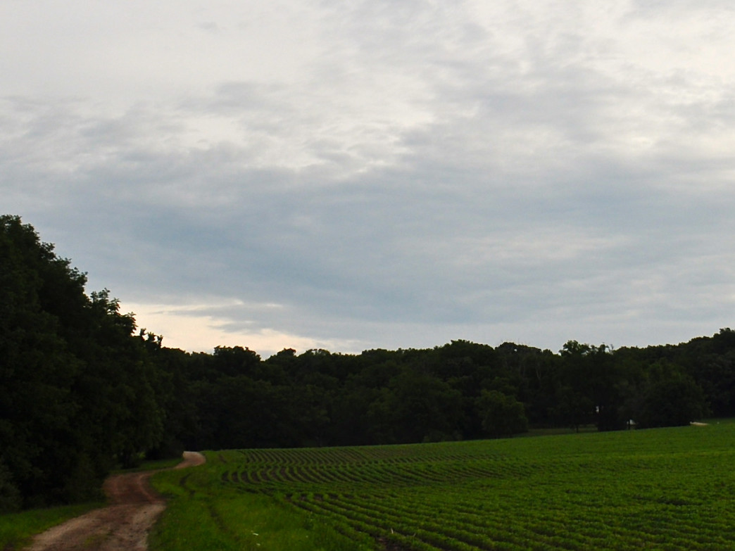 Charles Mound, which is on private property, is the highest natural point in Illinois.