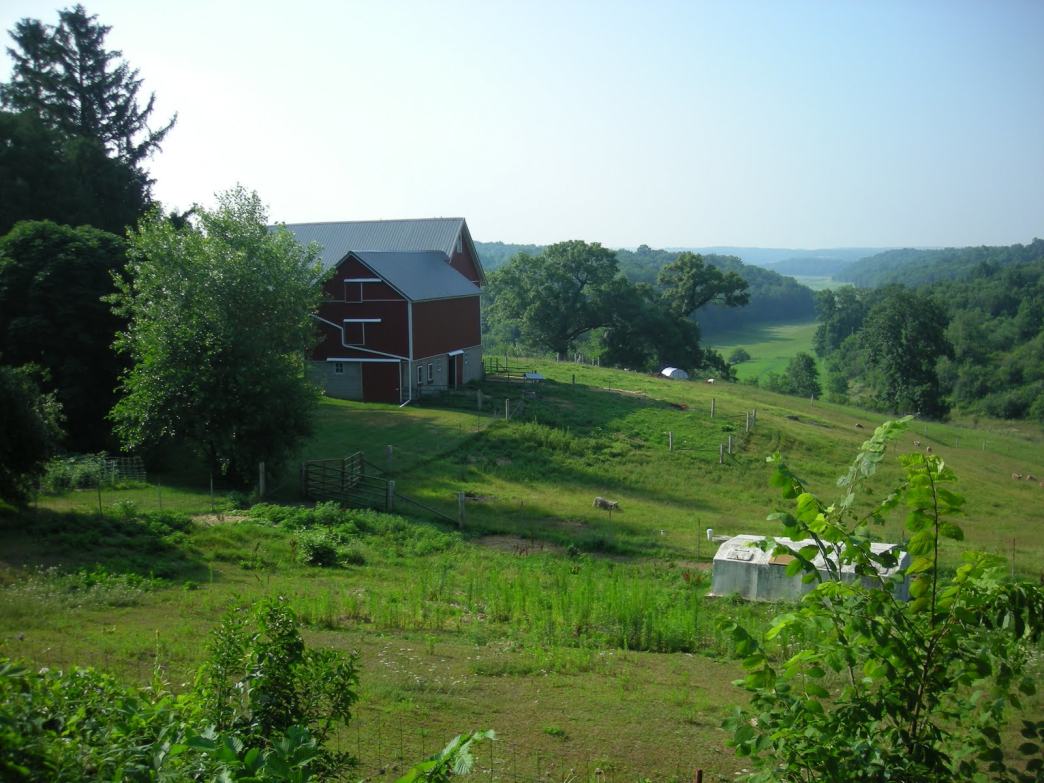 This farm is found on Table Bluff Road