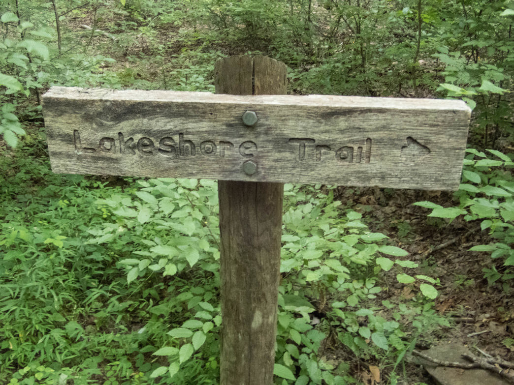 The Lakeshore Trail to Eagle Creek offers an alternative to the vertical incline of the Appalachian Trail into the Great Smoky Mountains.      Clay Duda