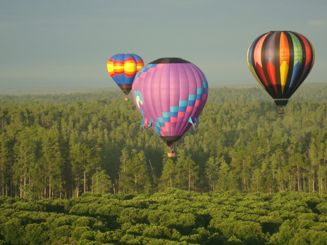 Get an amazing view of Florida from a hot air balloon.