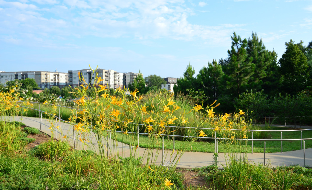 Atlanta's BeltLine is an urban gem that allows you to explore the city.