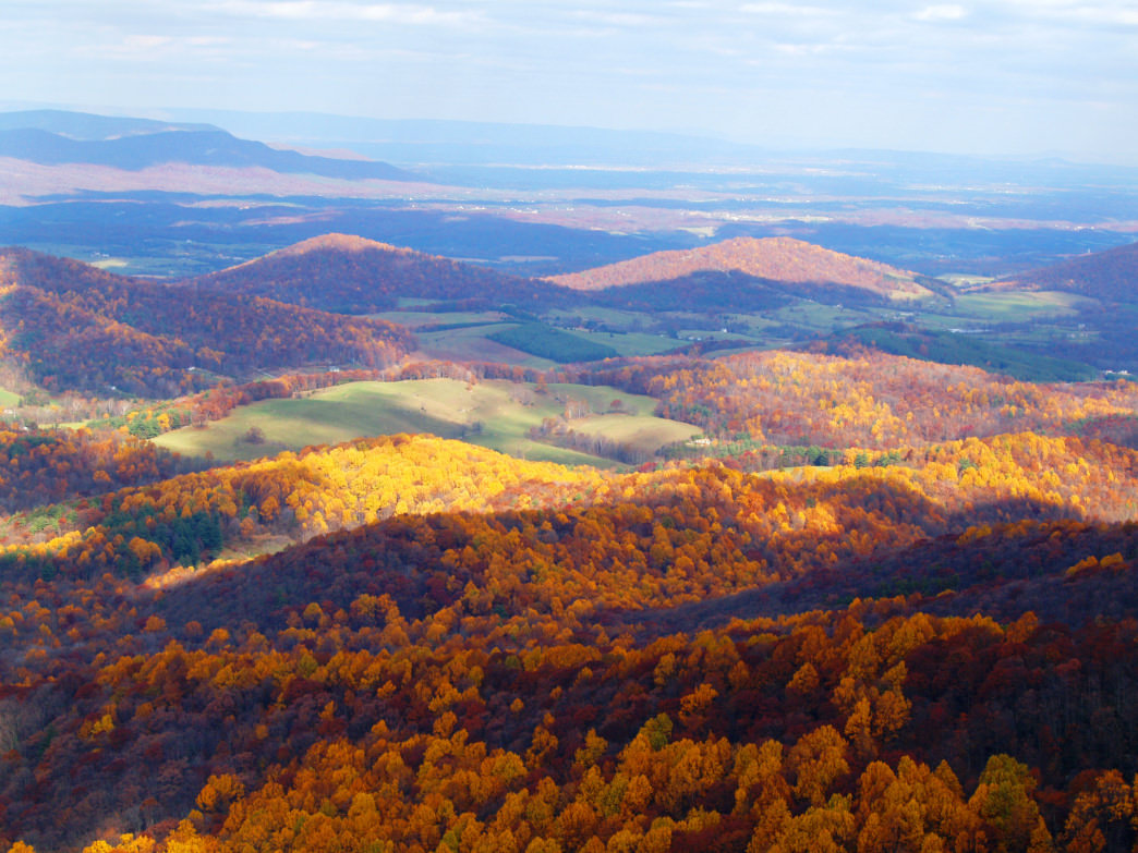 The beautiful Shenandoah Valley offers several self-guided tours to discover the best food, drinks, and outdoor activities in the region.