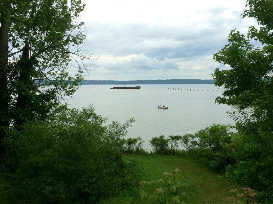 Looking down upon Mallows Bay.
