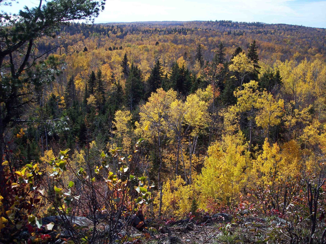 The view from Superior Hiking Trail in northern Minnesota.