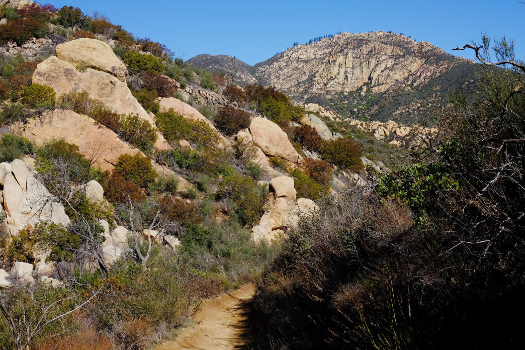 The trail to Inspiration Point, which is one of Santa Barbara's top hiking destinations.      Mark McKnight
