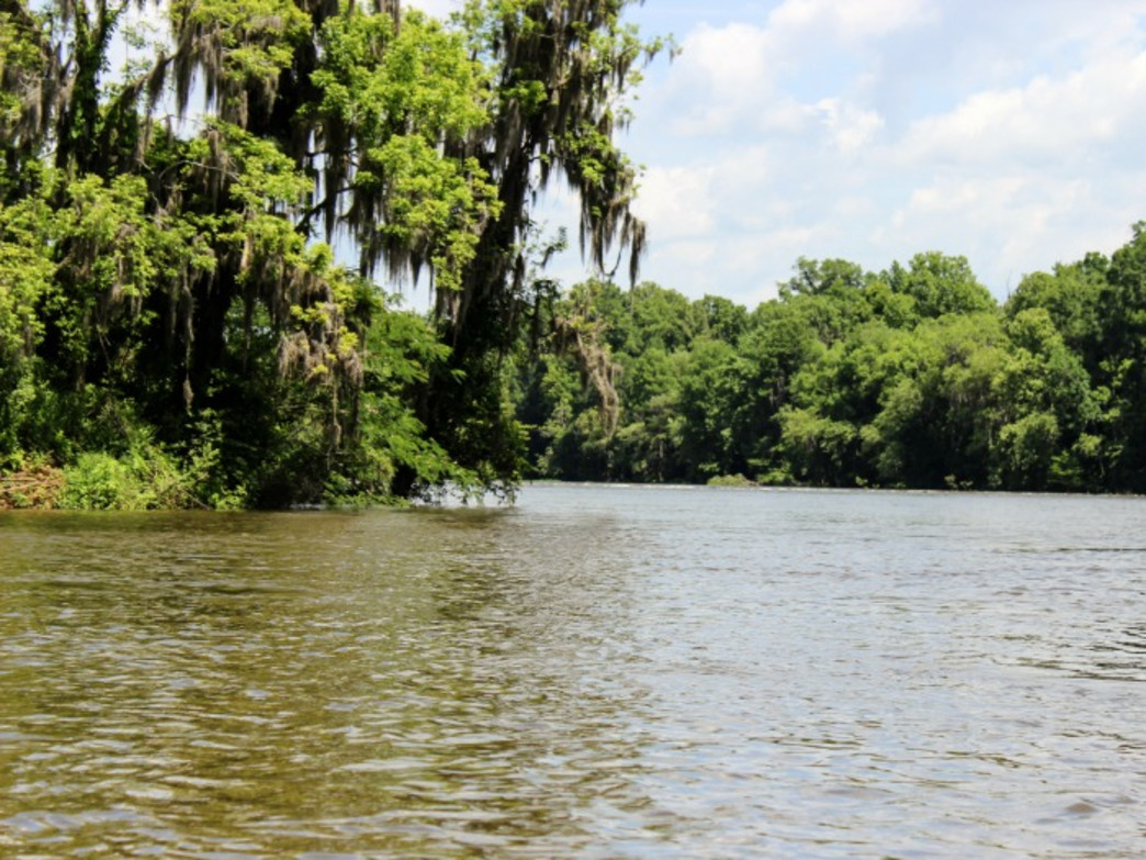 Take the time to explore the banks and be on the lookout for herons and osprey.