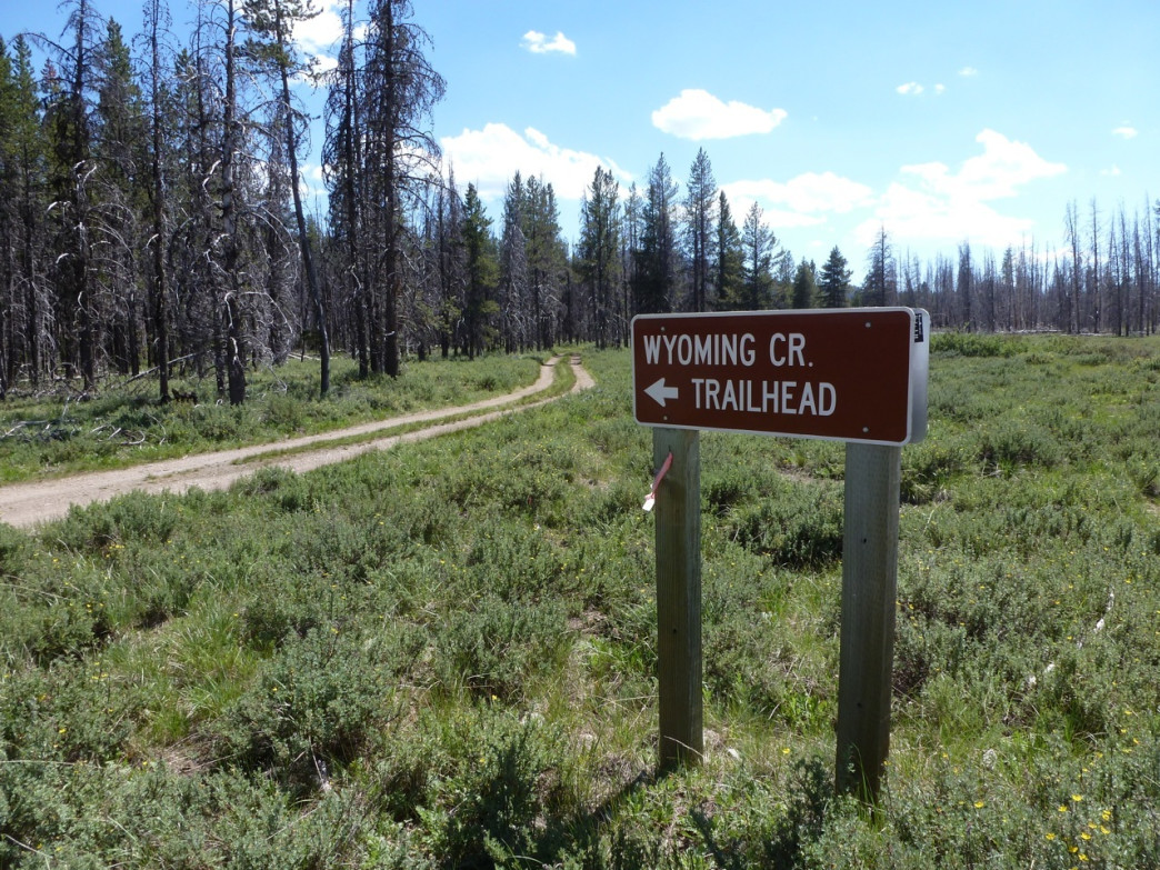 Some trailheads are only known to hunters and hikers should check them out, like this trailhead off the Stanley-Landmark Road in Bear Valley.