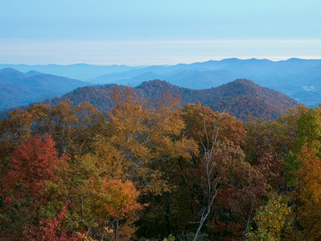 Black Rock Mountain State Park features the tallest point in Georgia.