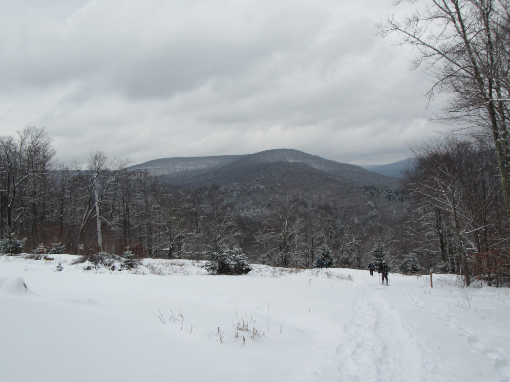 The Catskills in winter. via The Turducken on Flickr