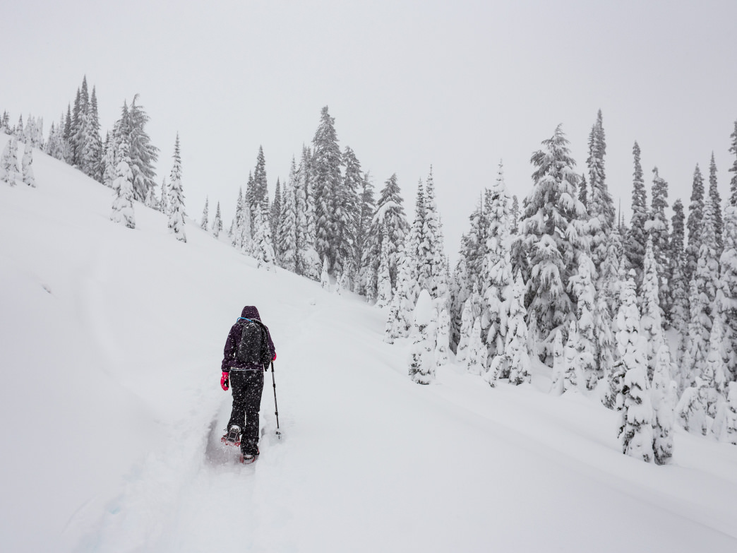 Snowshoeing through Mount Rainier National Park—one of the snowiest places in America.