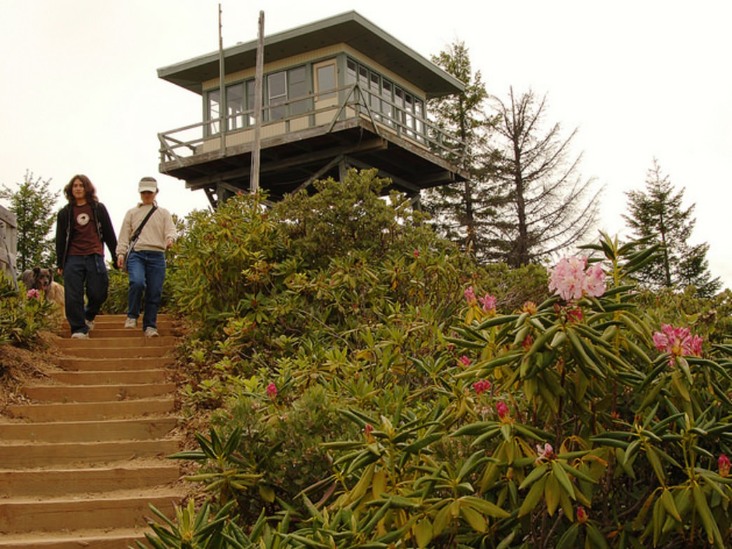 Campers who stay at the Bald Knob Lookout may see spotted owls, bull elk, and sandhill cranes from the lookout.