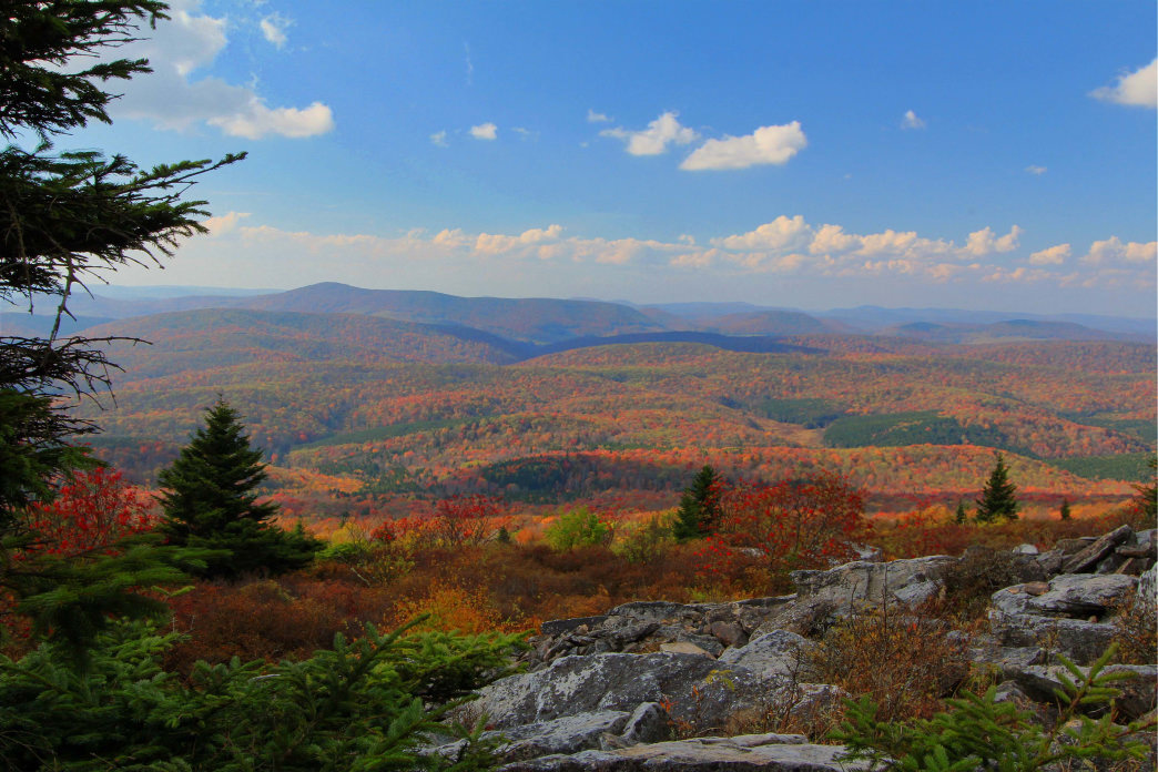 The view from Spruce Knob is especially scenic in the fall.
