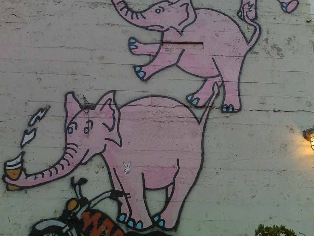 Don't worry, it's not just the beers - there really are pink elephants on the wall at Zeitgeist.
