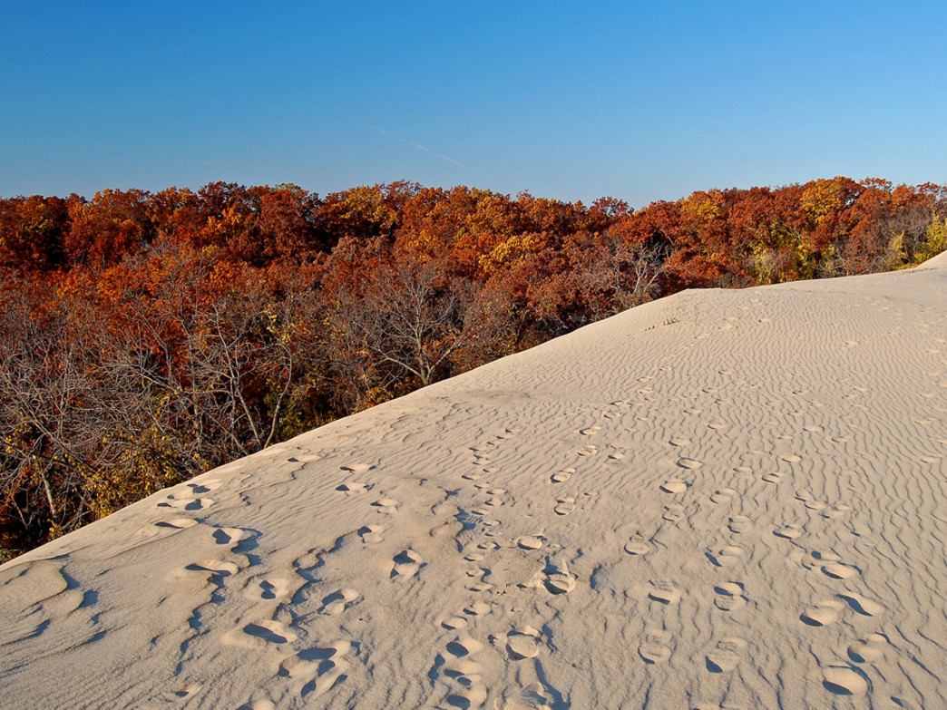 The Indiana Dunes features some spectacular views in the fall.
