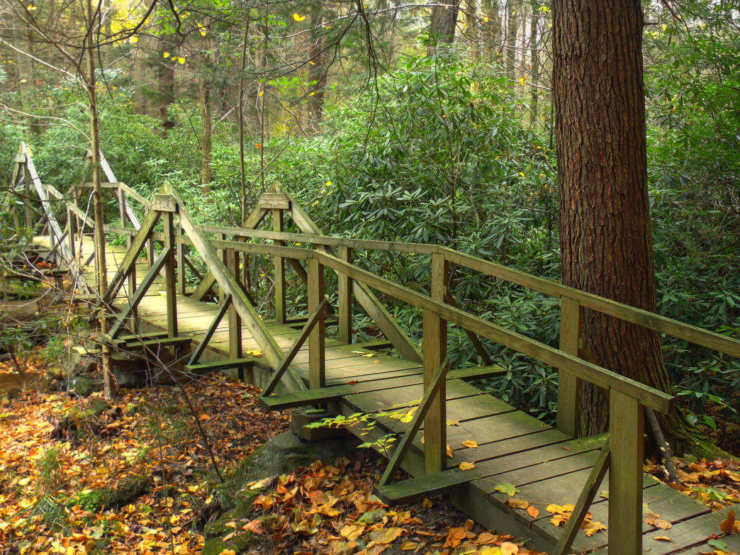 A Mid State Trail footbridge in Alan Seeger Natural Area of Rothrock State Forest