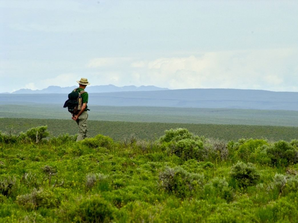 Desert plateaus go on forever in parts of the Owyhee Wilderness near Big Jacks Creek.