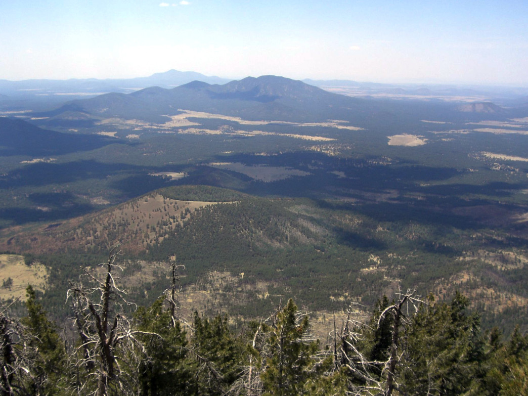 View from Kendrick Peak, Arizona.