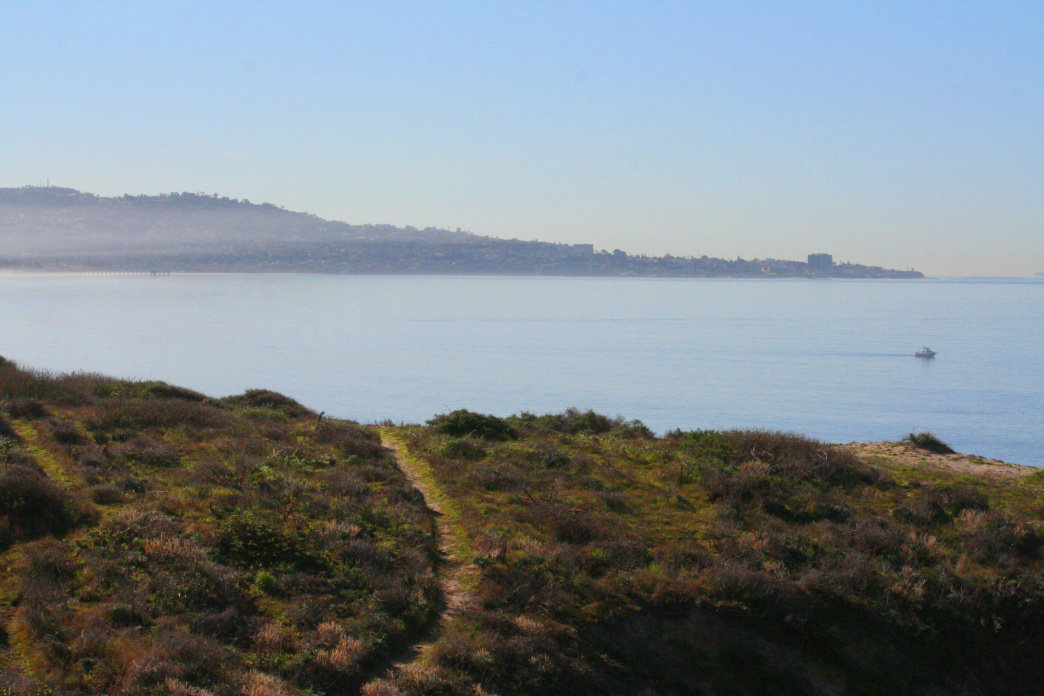 Singletrack at Torrey Pines State Park