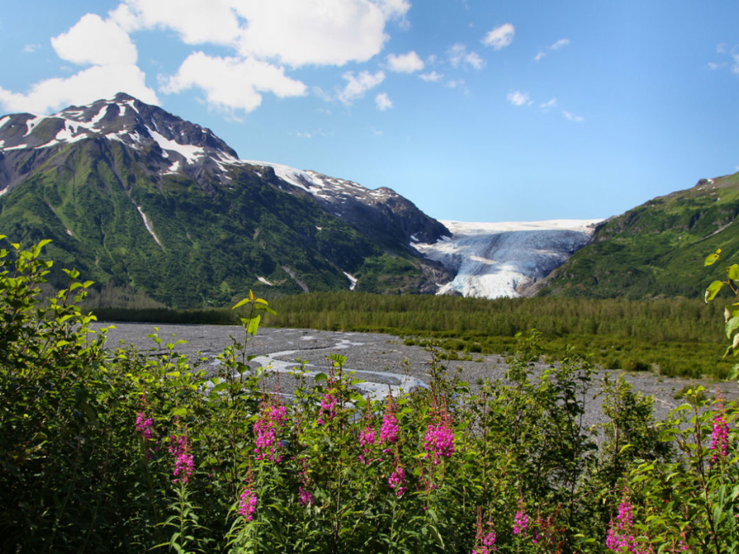 Insiders Guide to Kenai Fjords National Park