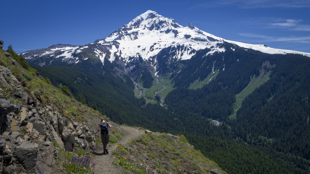 The Mount Hood view from Bald Mtn is among the best in the region.