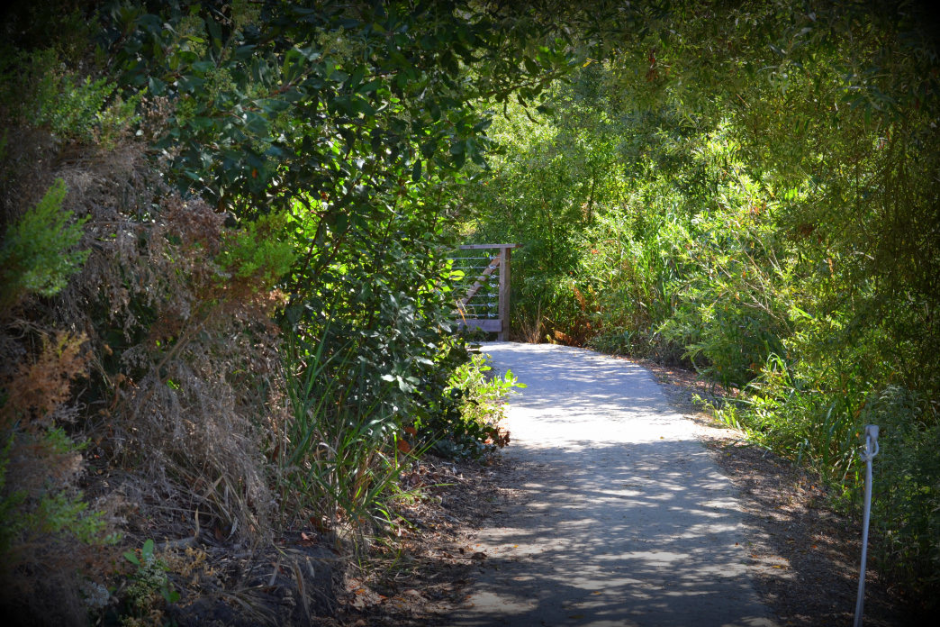 The bucolic entrance to SoCal's Crystal Cove State Park encourages you to lower your guard. Don't do it.