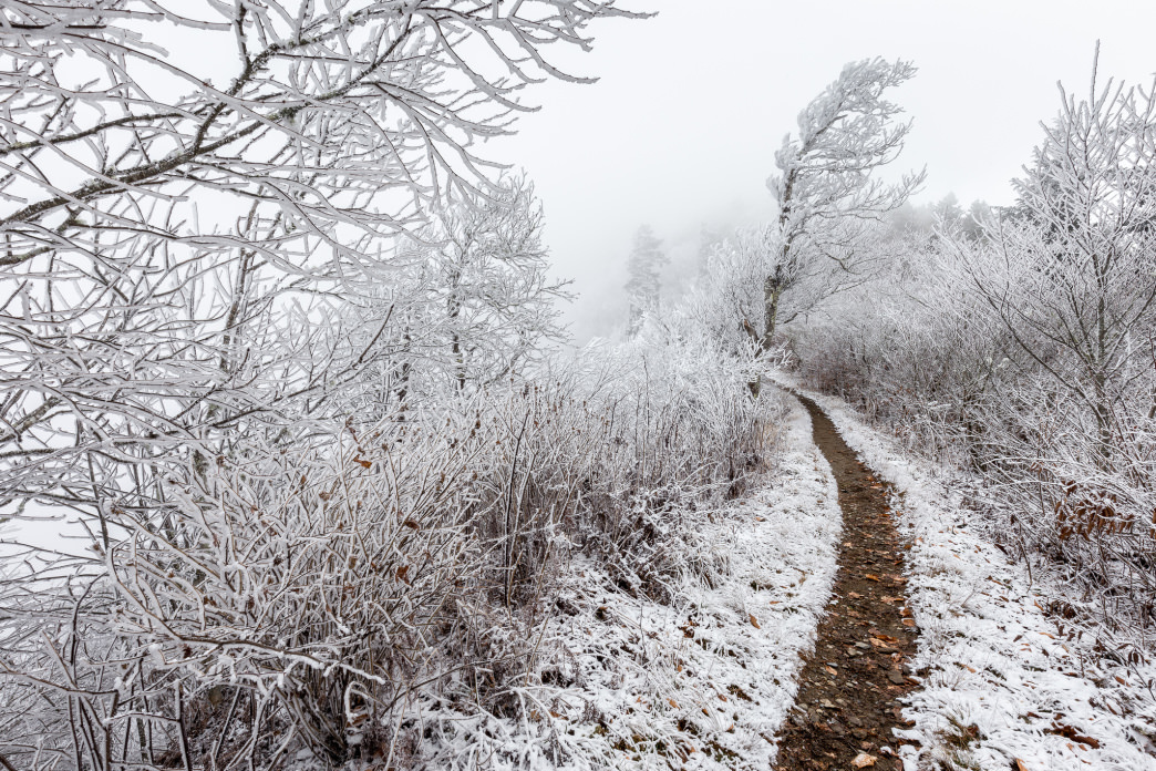 Snowy and Icy Appalachian Trail near Charlies Bunion in the Smokies.