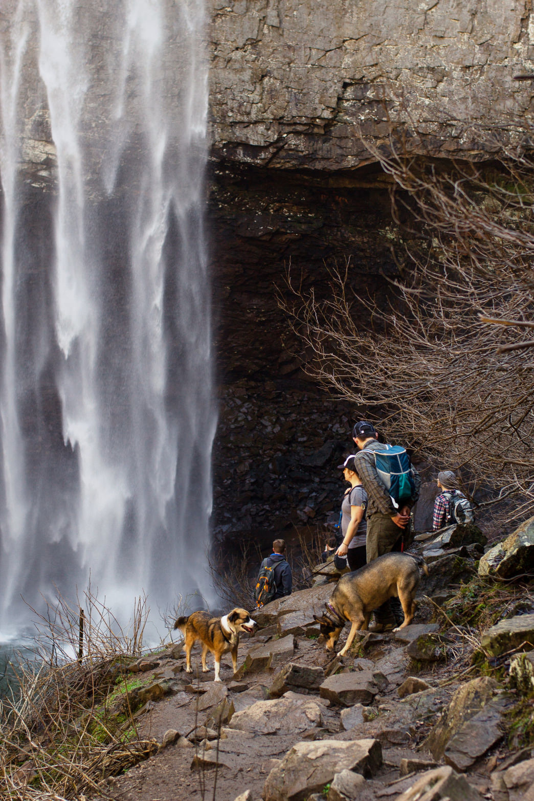 There are tons of things to do at Fall Creek Falls State Park.