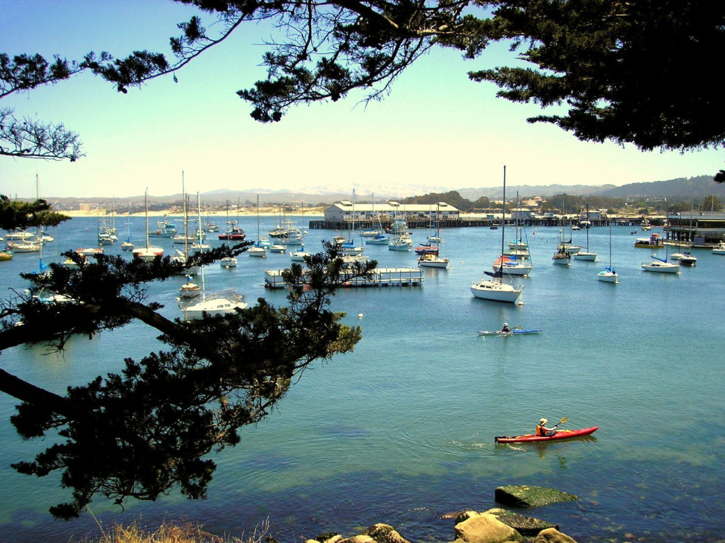 Monterey's coastline is full of delights for kayakers.
