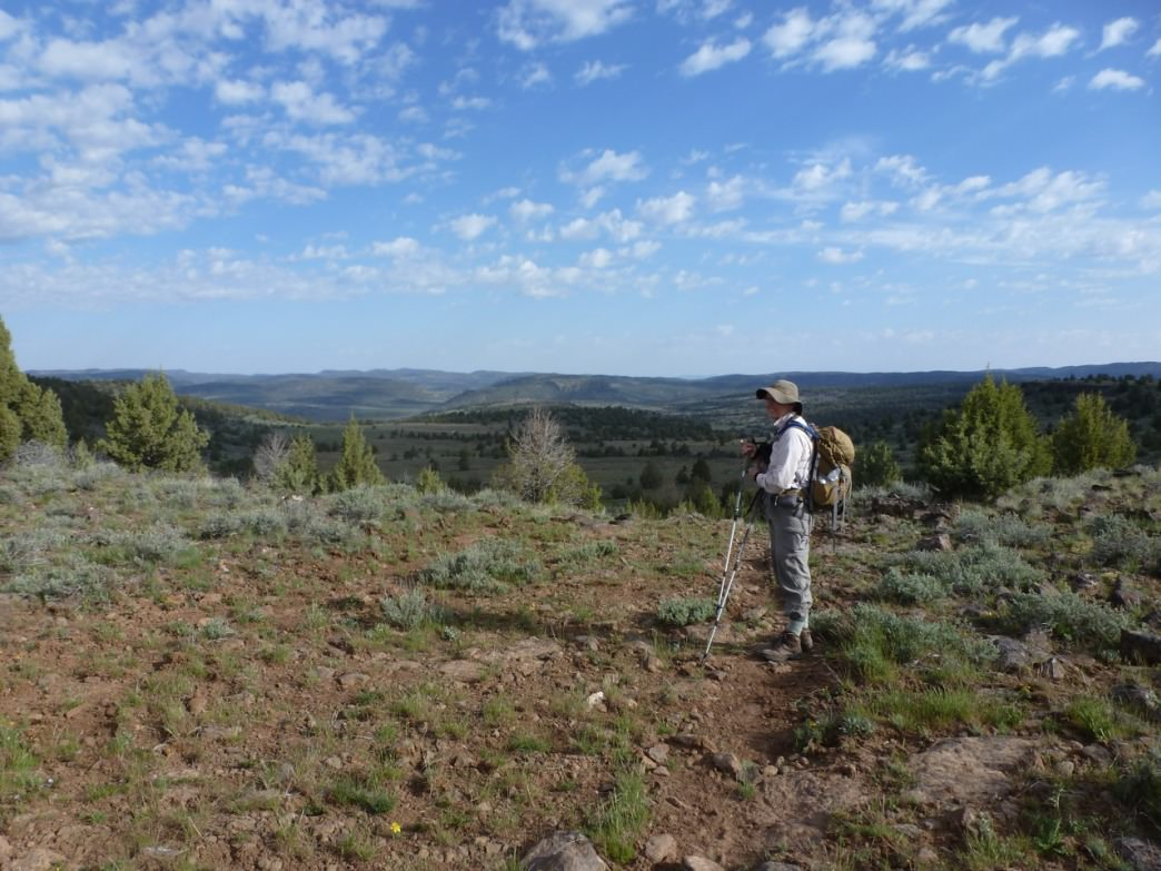 Hiking the rim off the Avery Plateau in the Pole Creek section of the Owyhee Wilderness offers spectacular views of juniper country.
