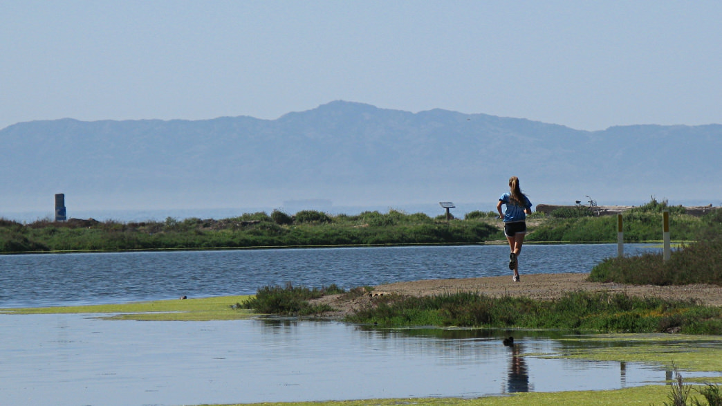 Running along the UCSB Lagoon Trail.
