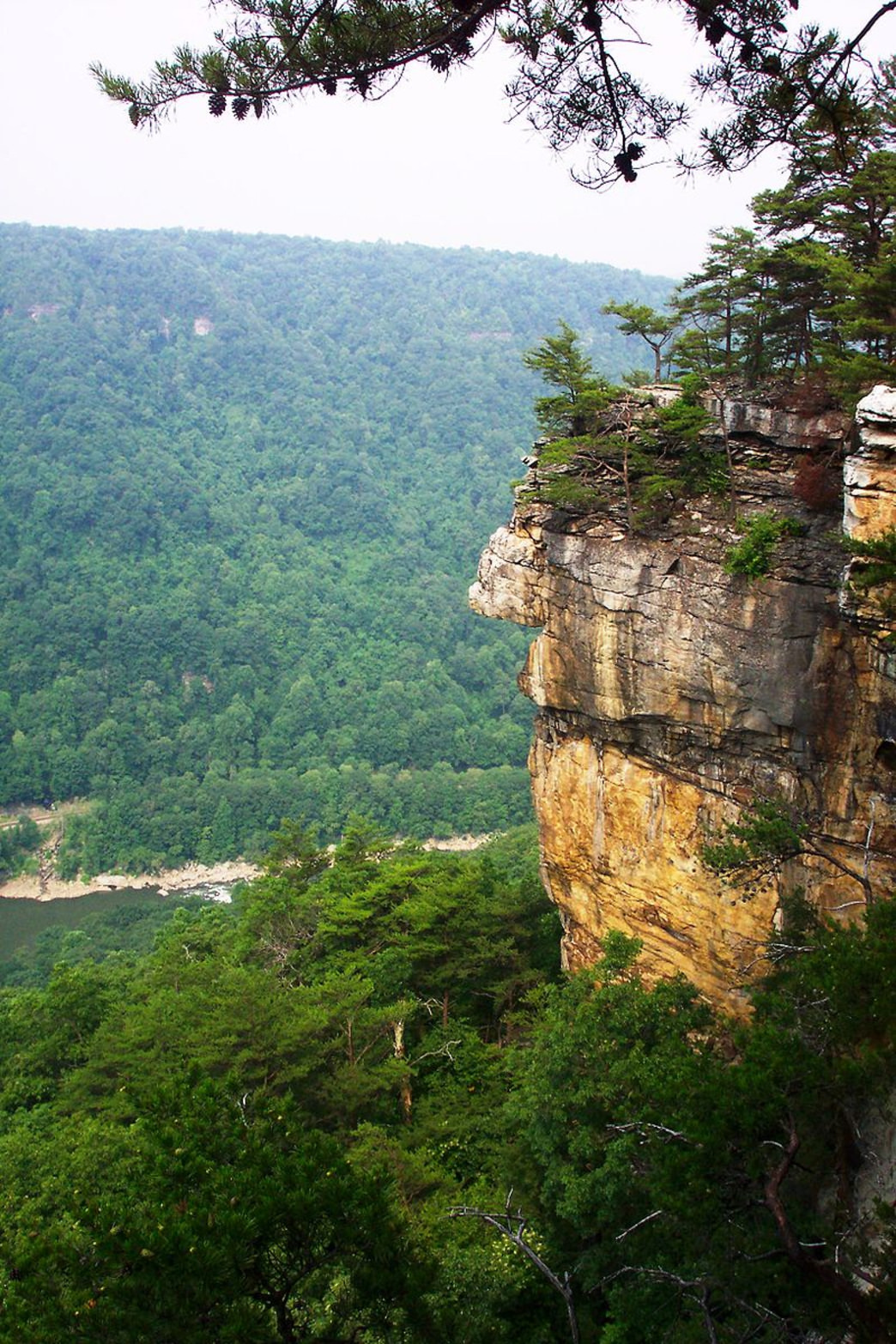 The Endless Wall at the New River Gorge is fun for hikers and rock climbers.