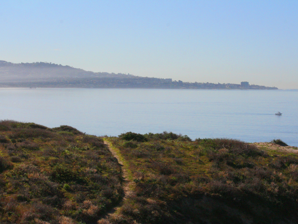 Singletrack at Torrey Pines State Park.