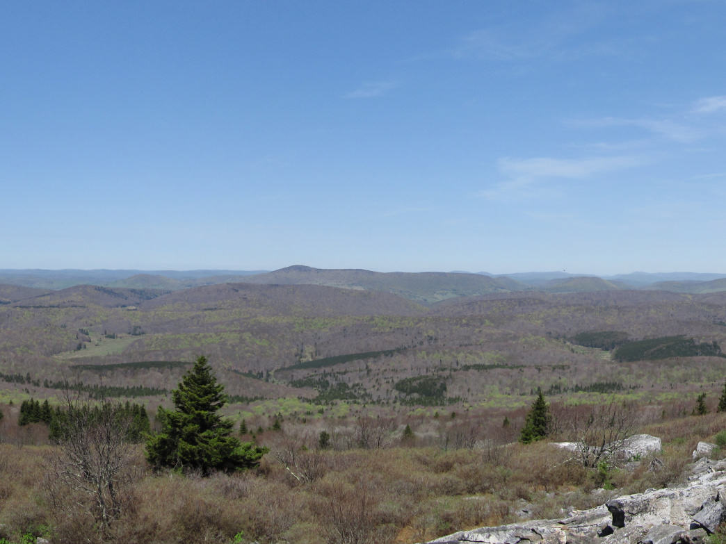 View from Spruce Knob looking west in Monongahela National Forest