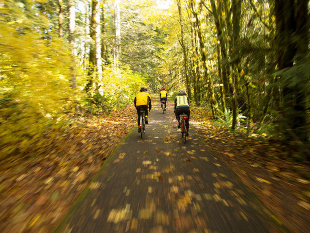 The Banks-Vernonia State Trail lets cyclists escape into nature, far removed from the busy streets of Portland.