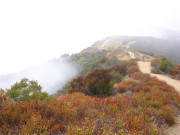 Image for Paseo Miramar Trail - Hiking
