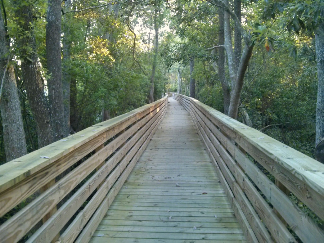 A boardwalk on the Southwest Greenway in Pensacola, Florida.