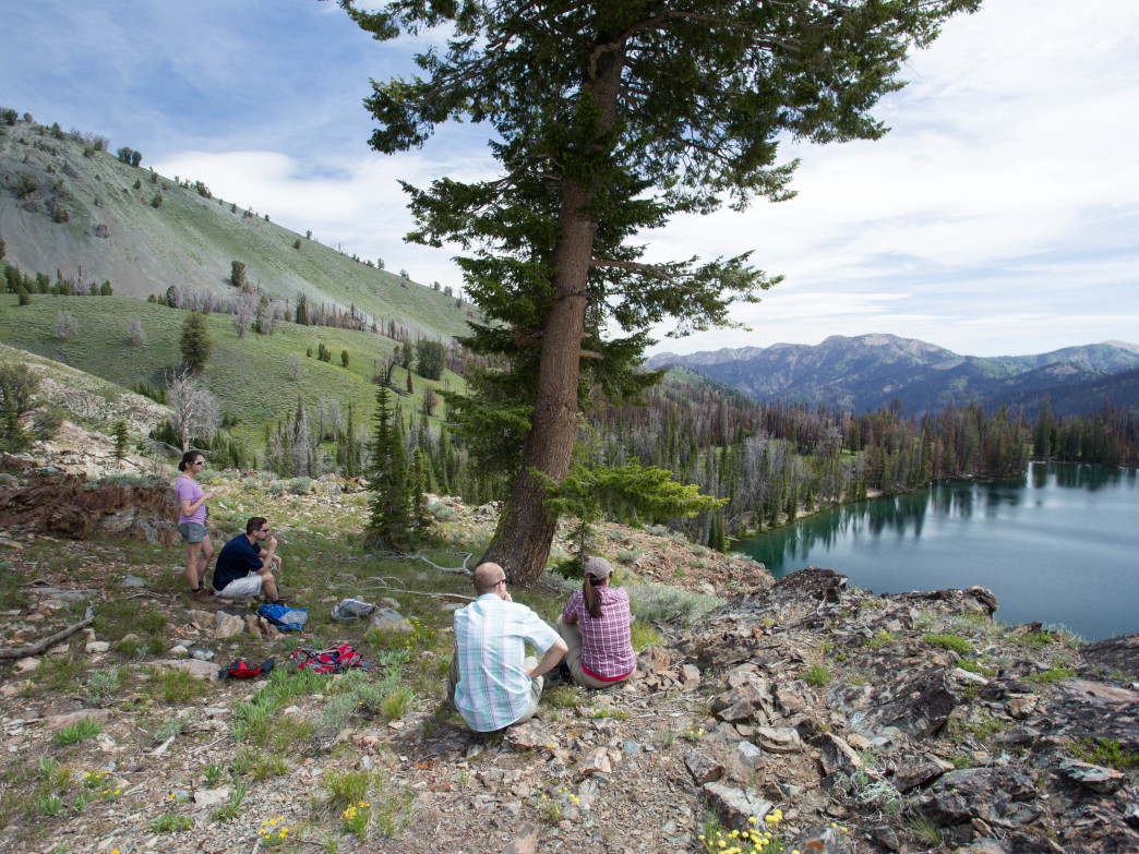 Baker Lake is the perfect picnic spot for the whole family.
