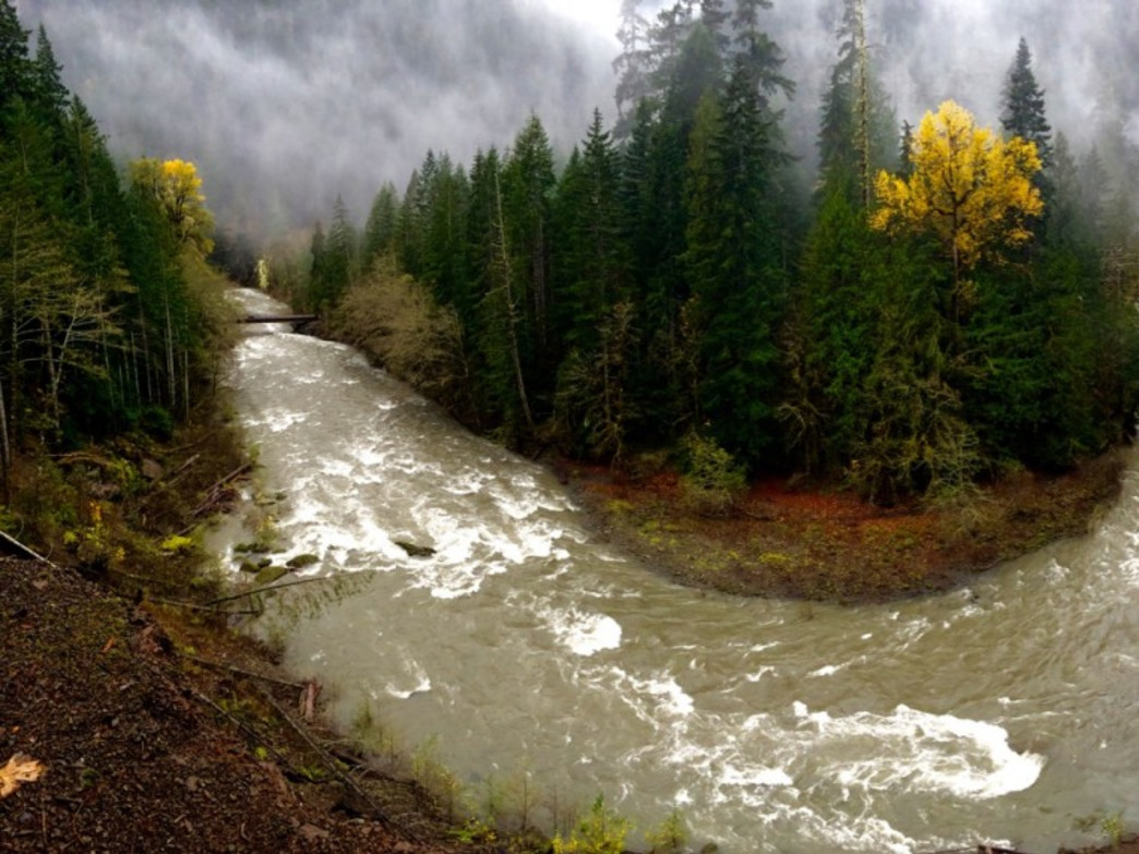 The Skokomish River snaking through the Staircase Region of Olympic National Park