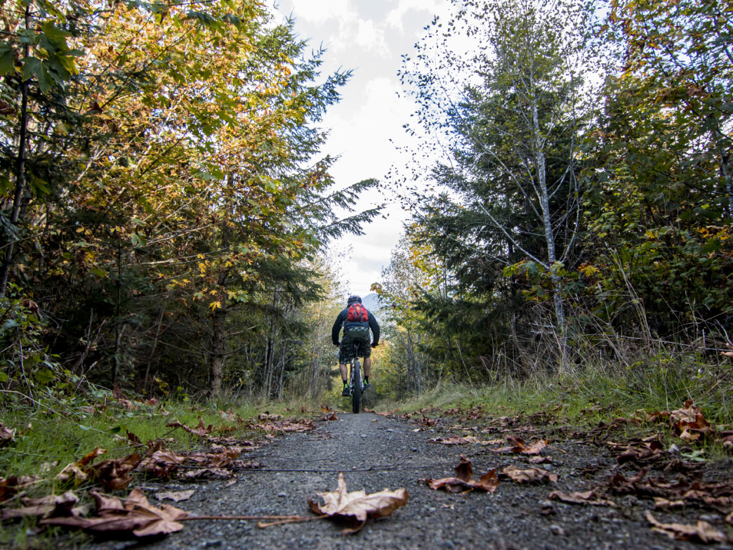 Mountain biking along a smooth stretch of the Washington's Adventure Route section of the Olympic Discovery Trail.