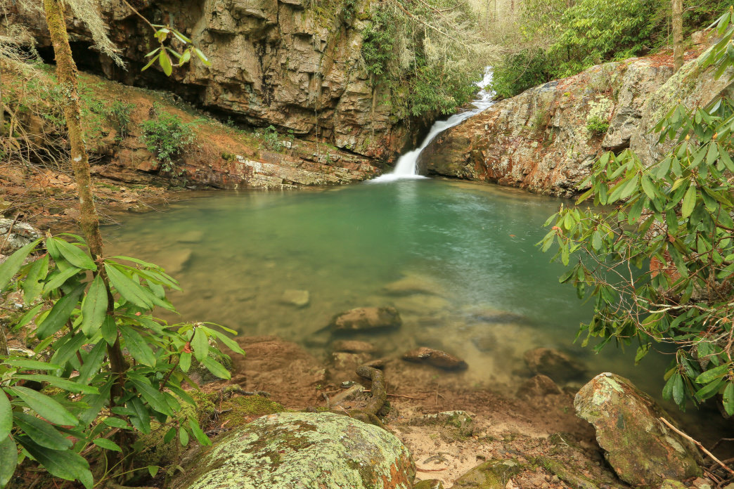 The Yellow Creek Falls and swimming hole can be found in the Starr Mountain area of the Cherokee National Forest.