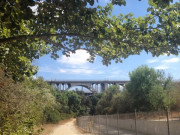 Image for Arroyo Seco Trail Running
