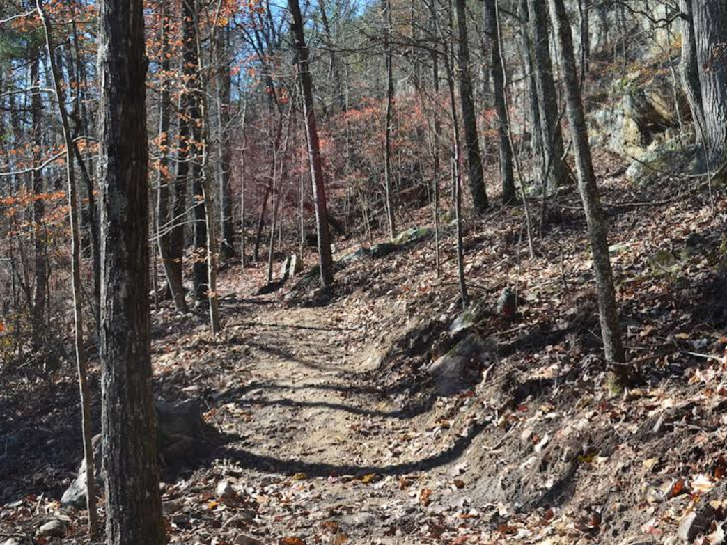 The new mountain bike trails at the Turkey Creek Nature Preserve open this month.