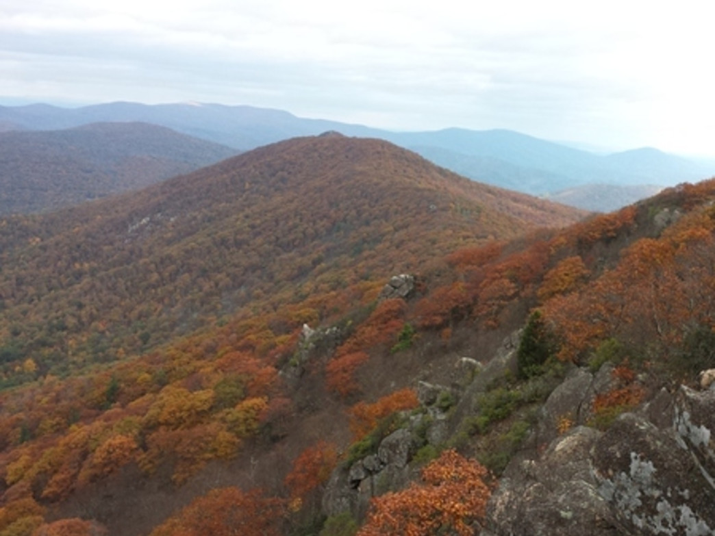 The Pinnacle and Pulpit Rock offer two amazing vistas on one of the most popular and beautiful hikes on the Pennsylvania portion of the Appalachian Trail.