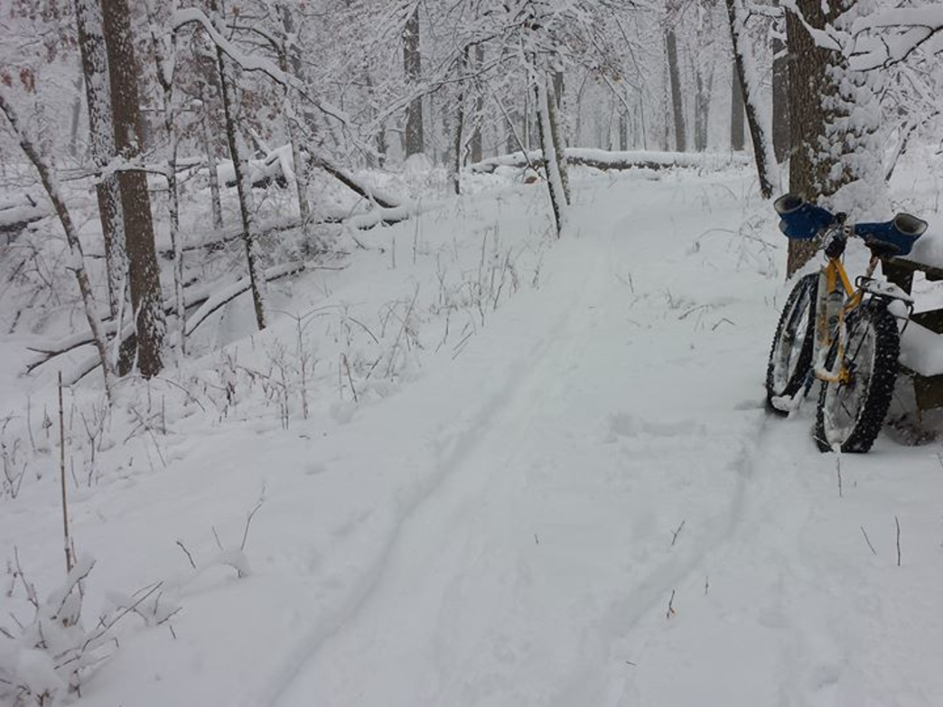 Fat biking on the Palos Trail System.