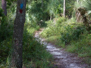 Image for Wekiwa Springs State Park - Hiking
