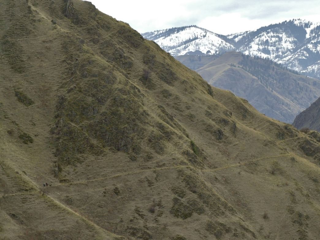 Hikers are tiny dots along a trail in massive Hells Canyon. The Snake River Trail is one of the earliest places to go backpacking in Idaho.