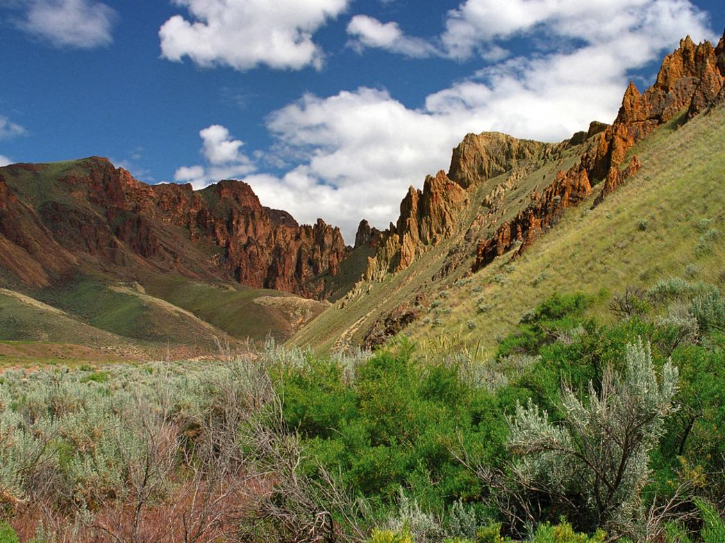 Landscapes like this one, in Leslie Gulch, are ripe for exploration.