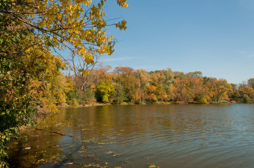 Fall is a great time to visit the Skokie Lagoons.