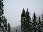Image for Stevens Pass - Backcountry Skiing